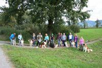 b_200_200_16777215_00_images_BFO-Herbstwanderung-Sept18-004.JPG